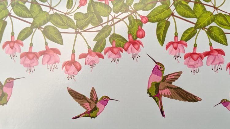 hummingbird.card_.jpg