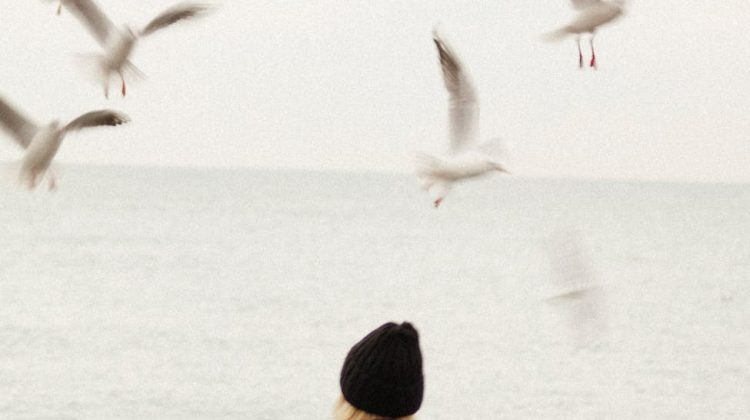 pexels-photo-9806553.jpg